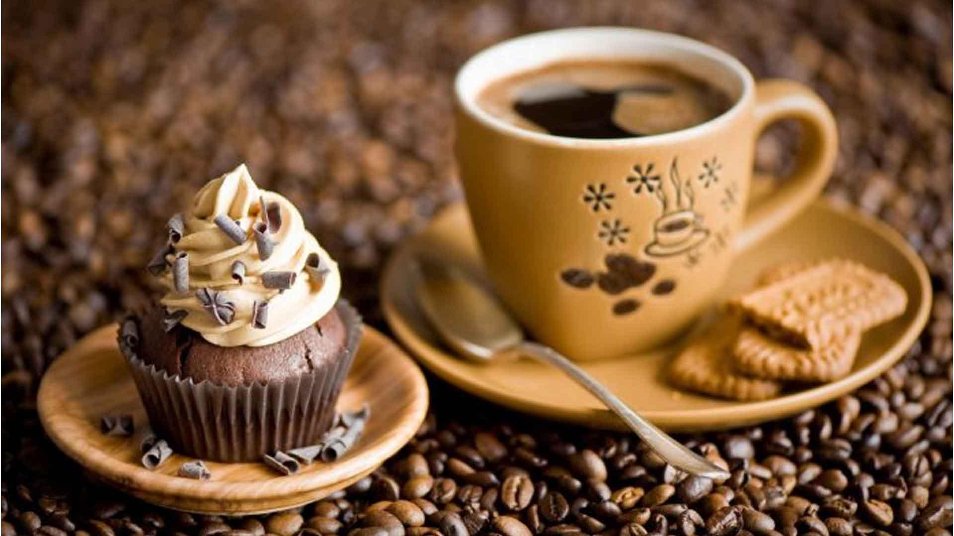 20 درصد تخفیف کافه فریم رشت
